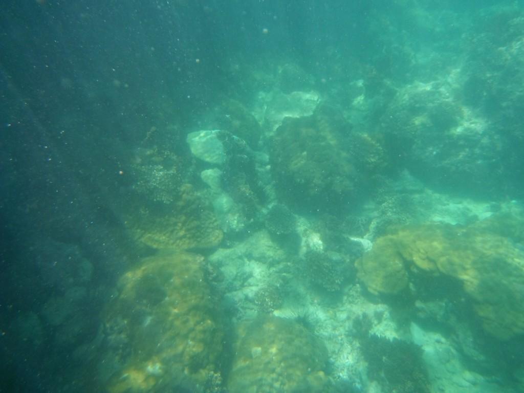 5 rzeczy, których nie warto zabierać do Tajlandii Ang Thong National Marine Park pod wodą :)